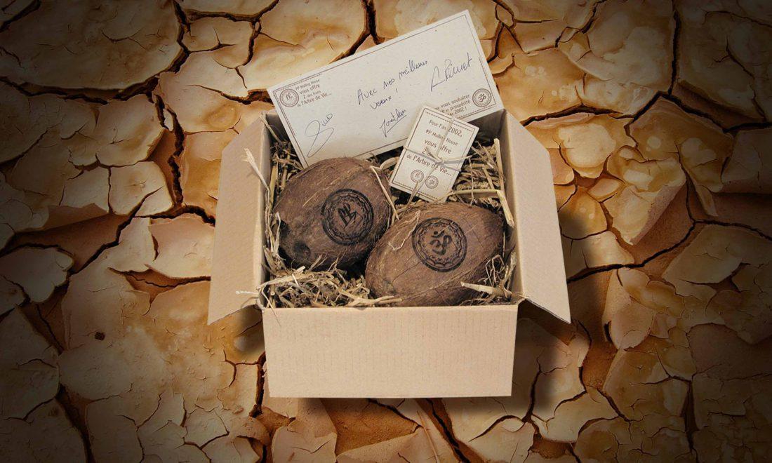 envoi personnalisé histoire de la noix de coco et tamponnage