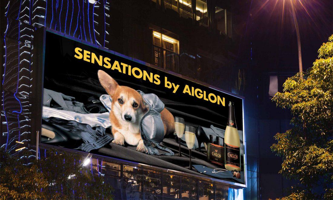 affichage suisse promotion aiglon